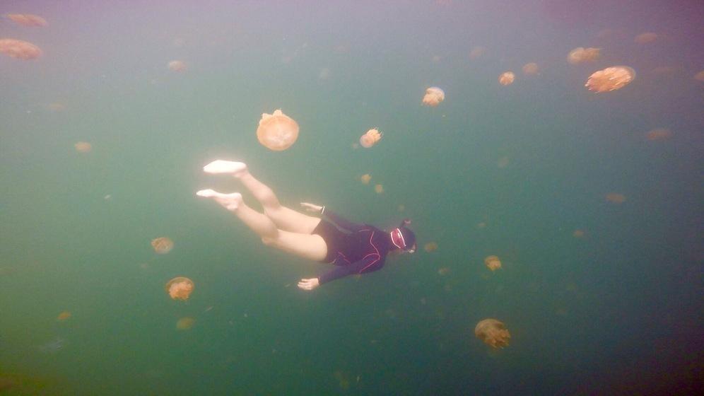 Jellyfish Lake, Kakaben island of Derawan